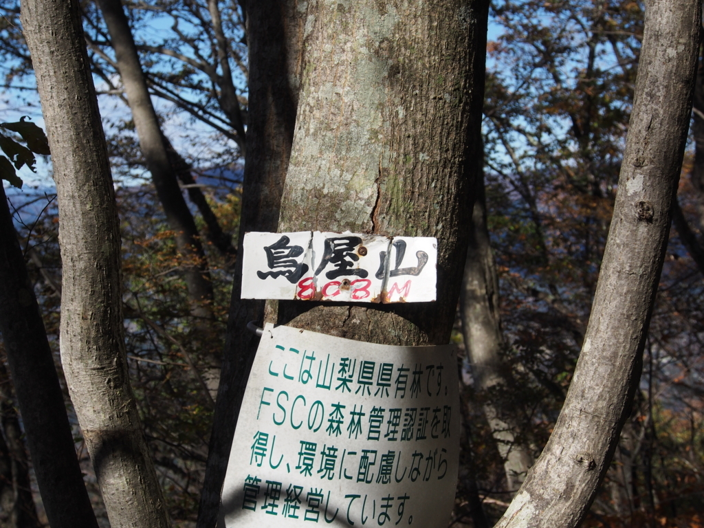 f:id:yamajoshi:20171125192857j:plain
