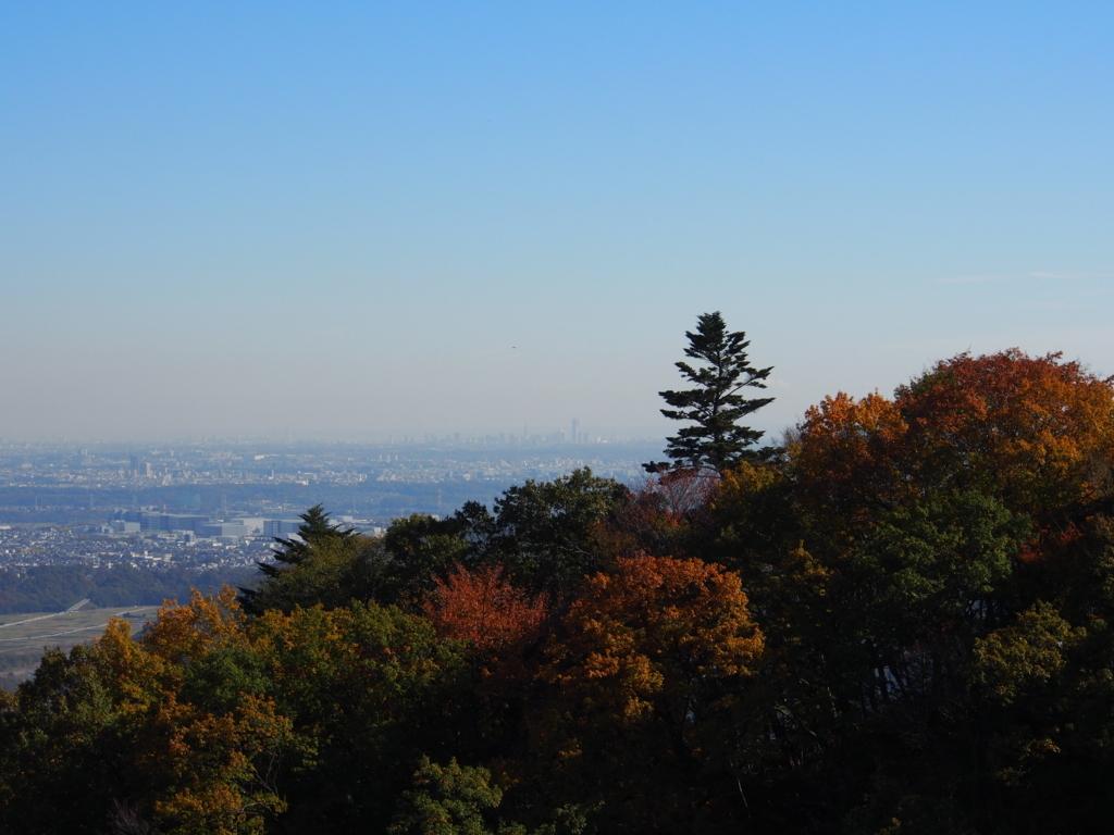 f:id:yamajoshi:20171202130227j:plain