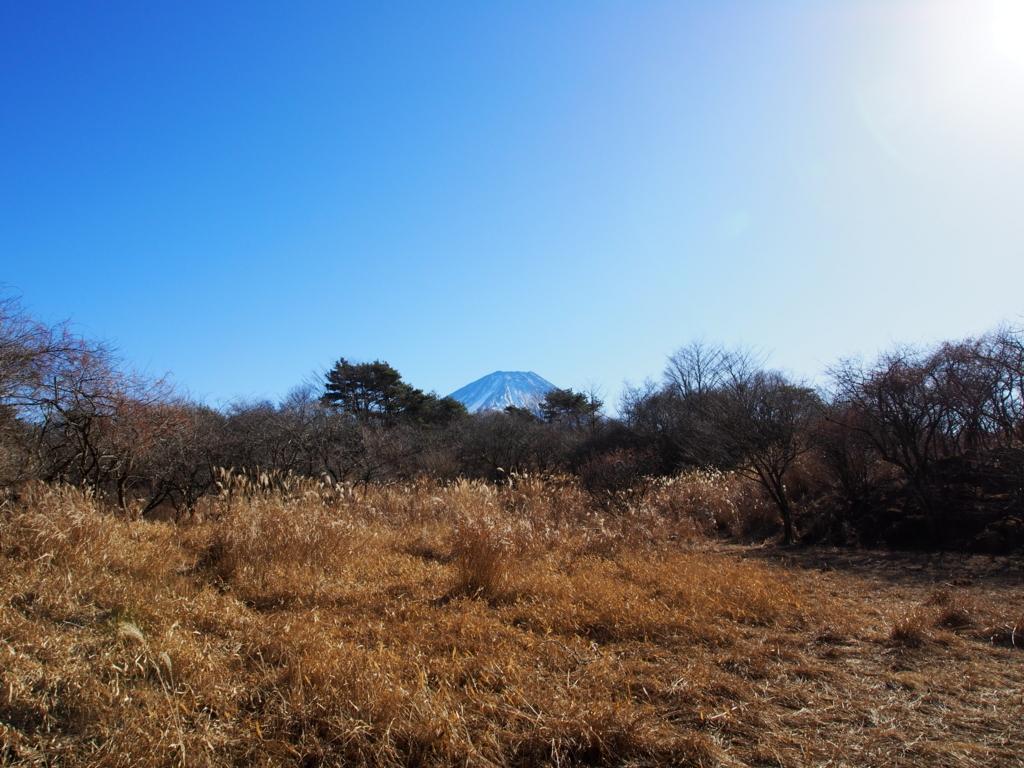 f:id:yamajoshi:20171231120532j:plain