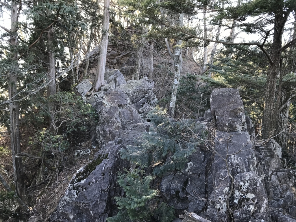 f:id:yamajoshi:20180113185150j:plain