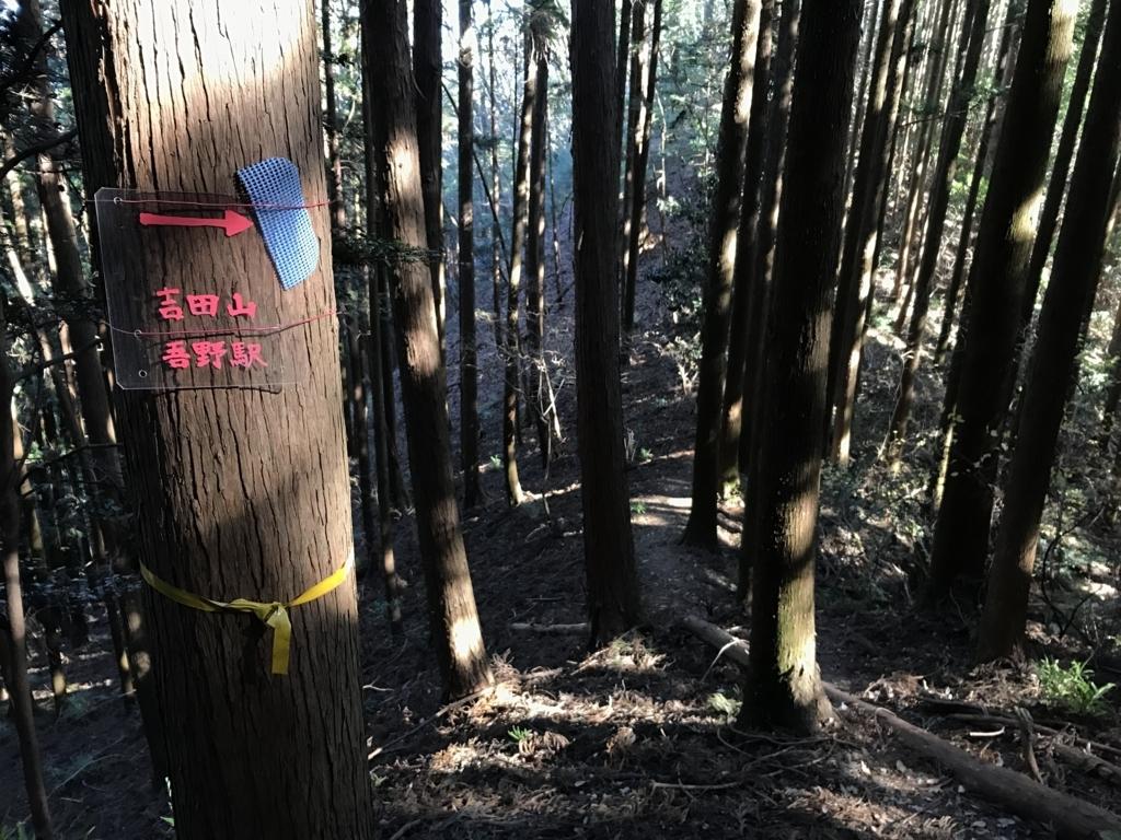 f:id:yamajoshi:20180113202911j:plain