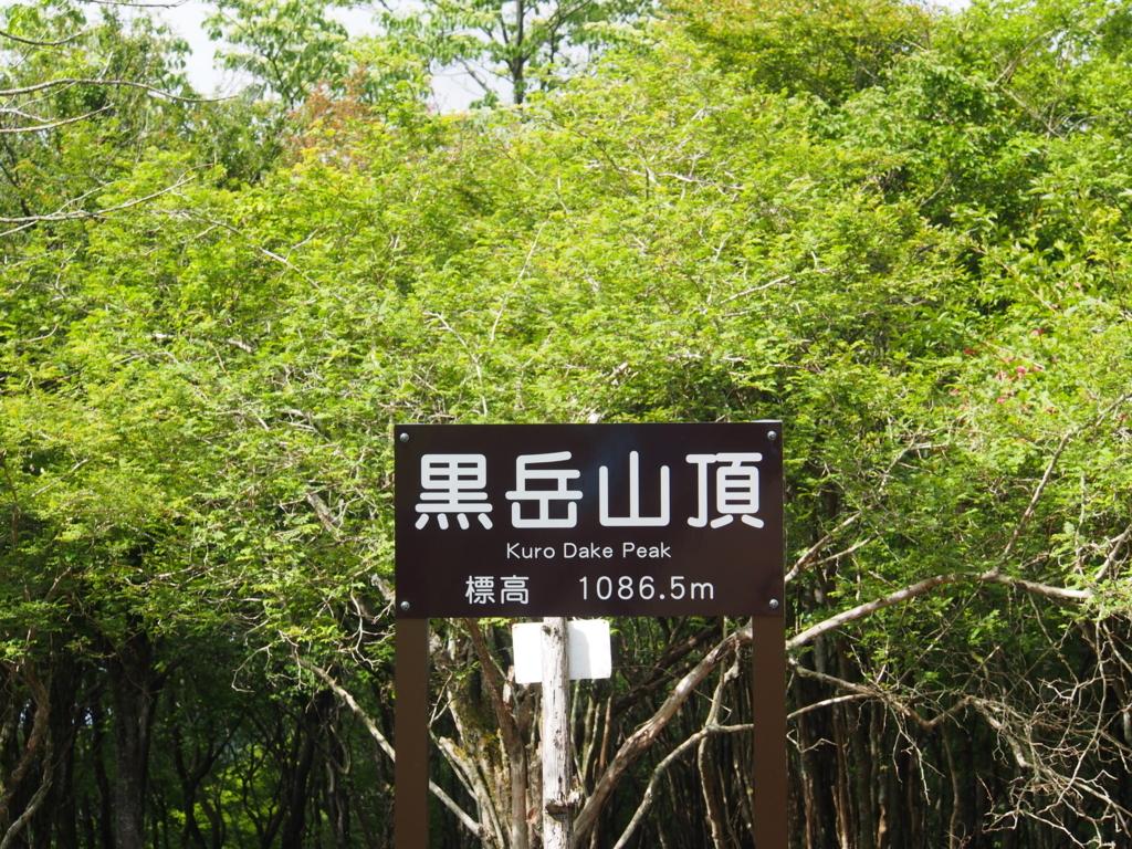 f:id:yamajoshi:20180609135920j:plain