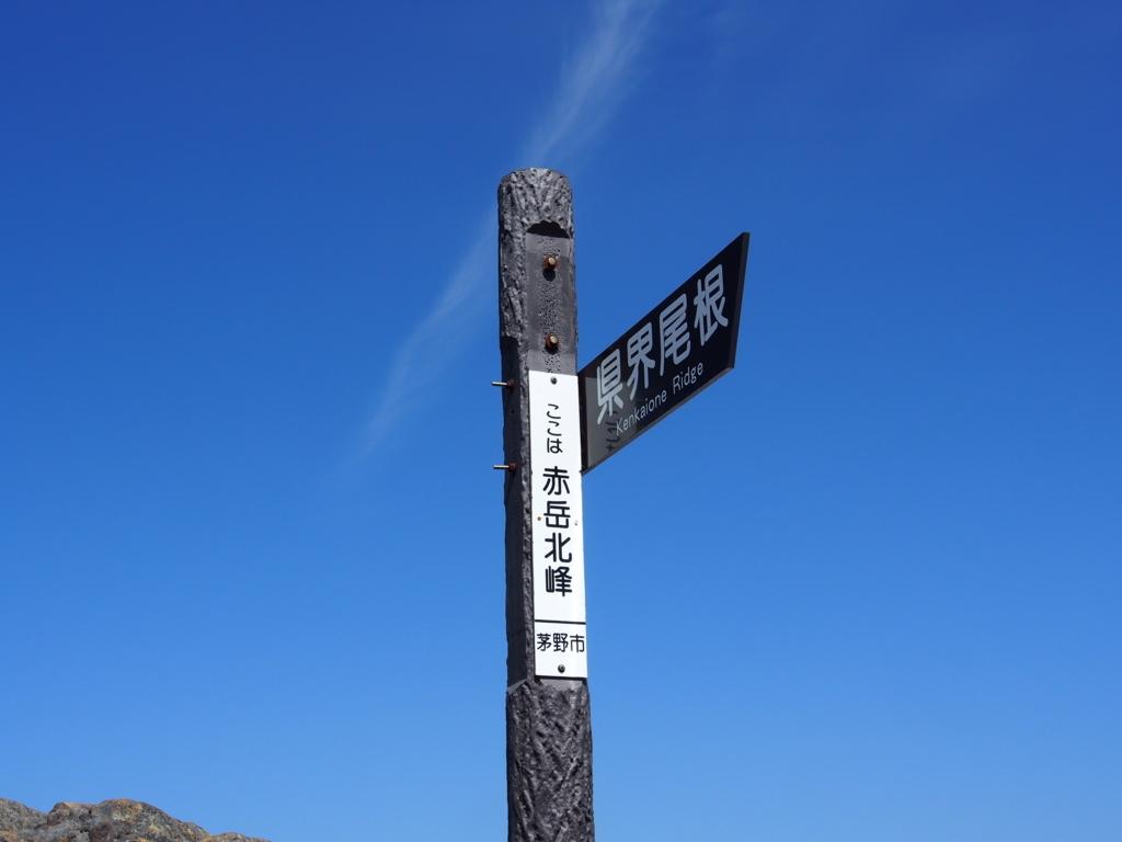 f:id:yamajoshi:20180609231113j:plain