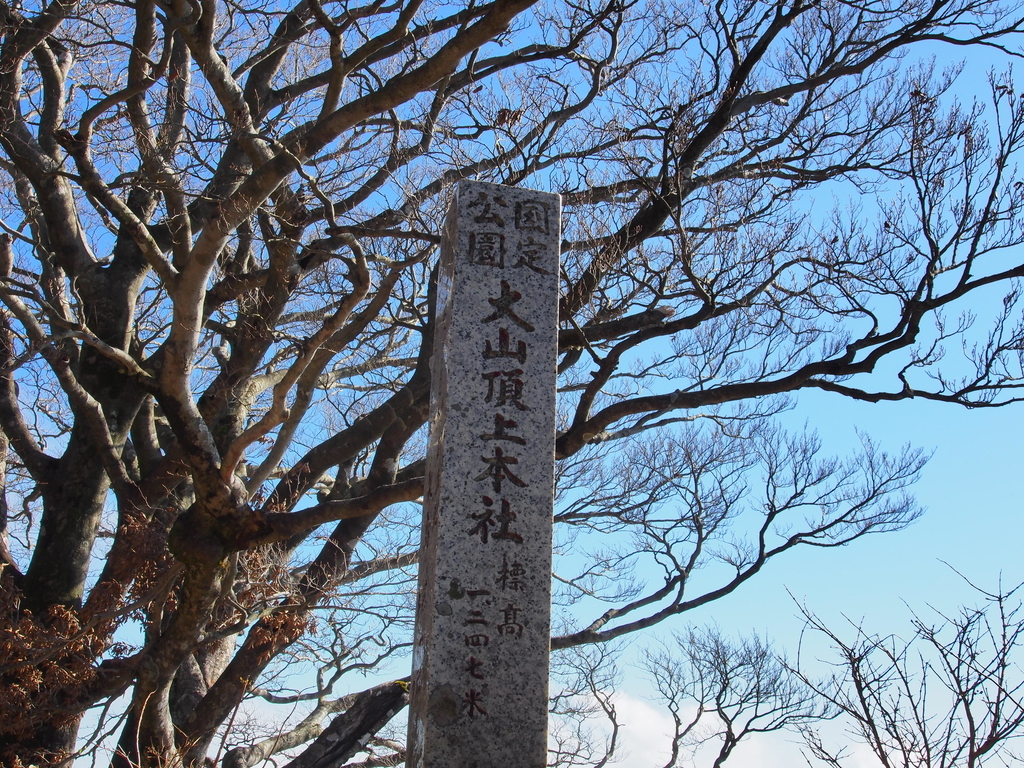 f:id:yamajoshi:20190112135044j:plain