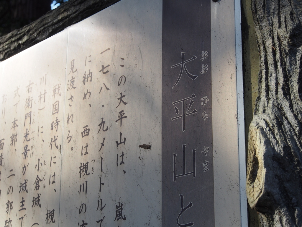 f:id:yamajoshi:20190119181559j:plain