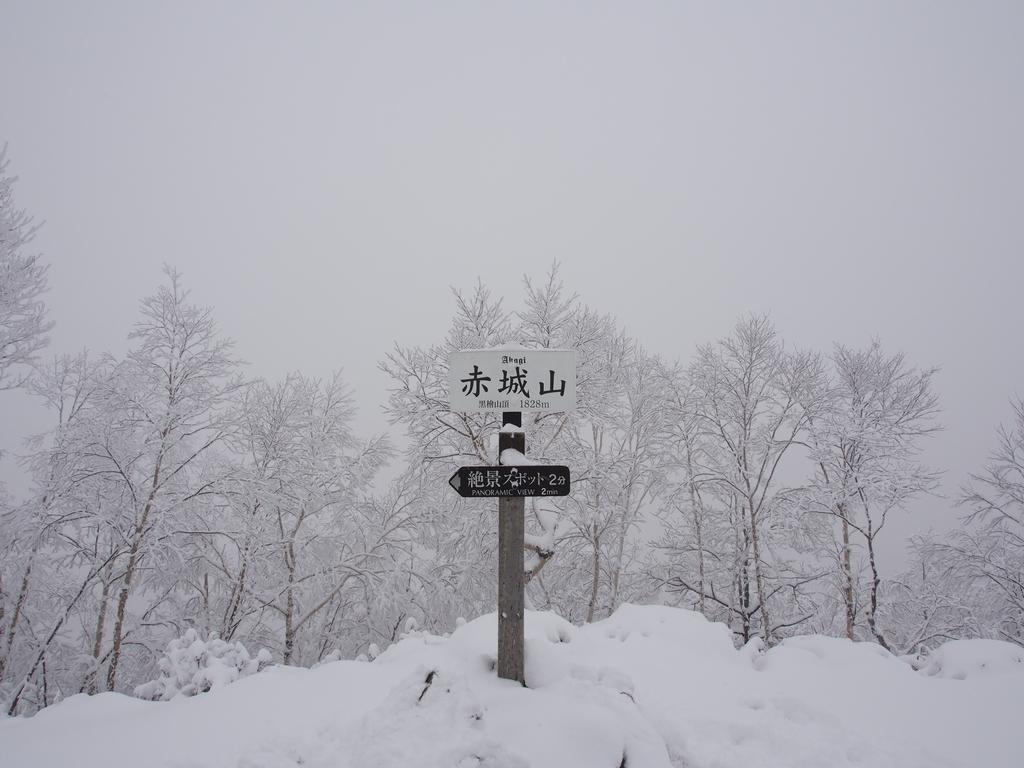 f:id:yamajoshi:20190127211910j:plain