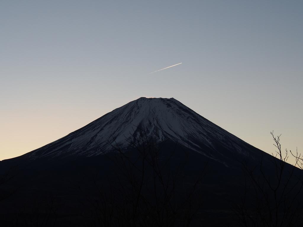 f:id:yamajoshi:20190210183120j:plain