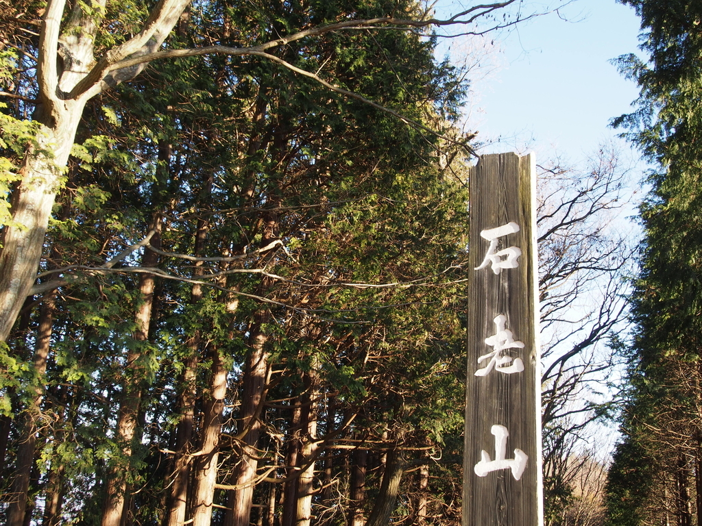 f:id:yamajoshi:20190211153020j:plain