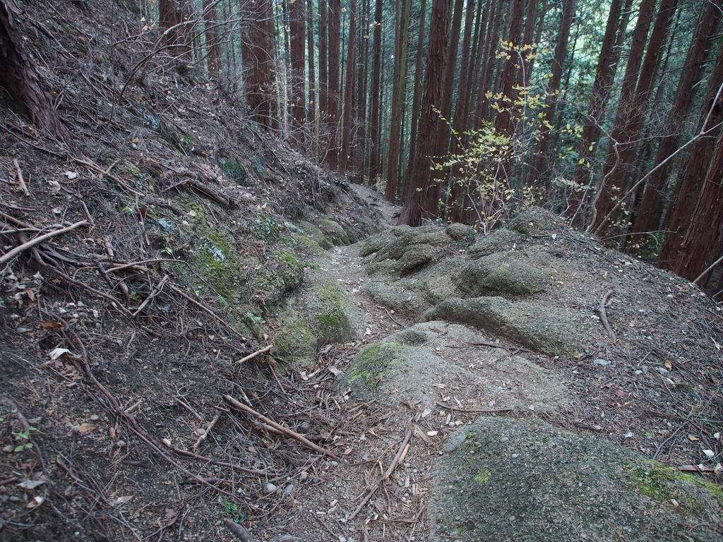 f:id:yamajoshi:20190211172525j:plain