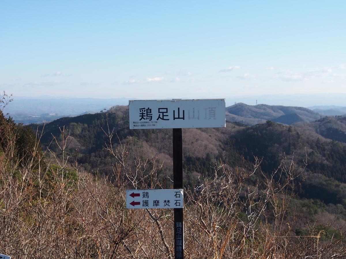 f:id:yamajoshi:20190505151115j:plain