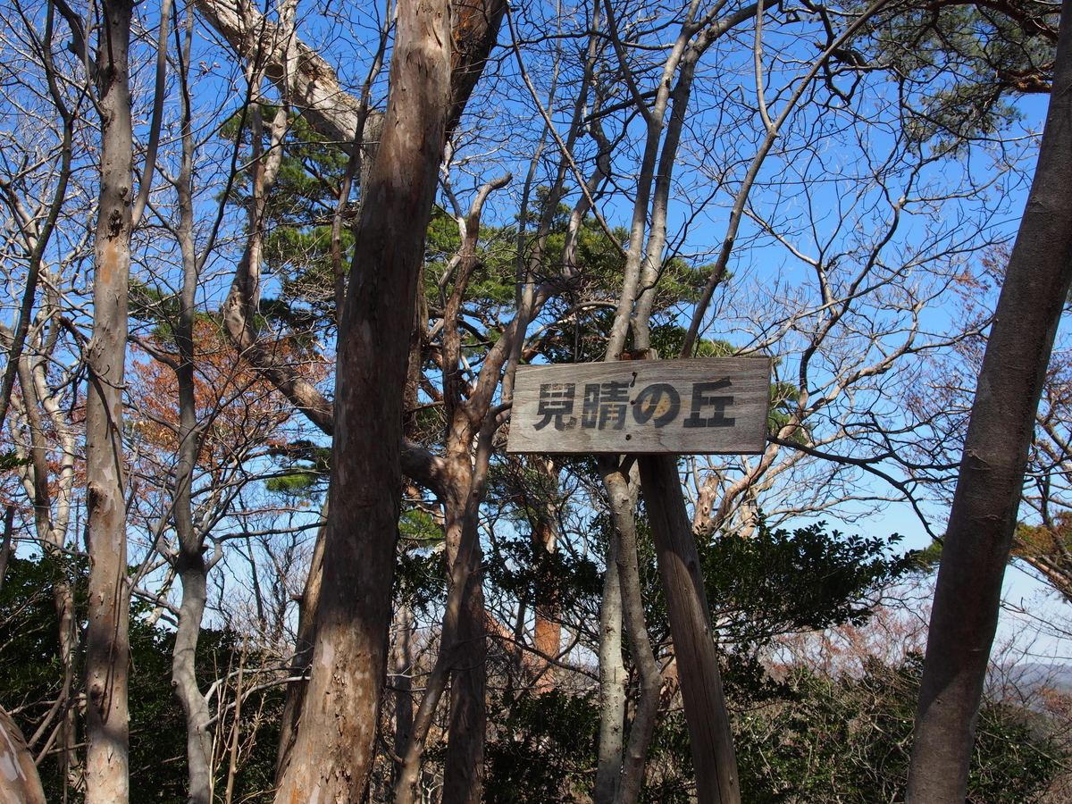 f:id:yamajoshi:20190506175125j:plain