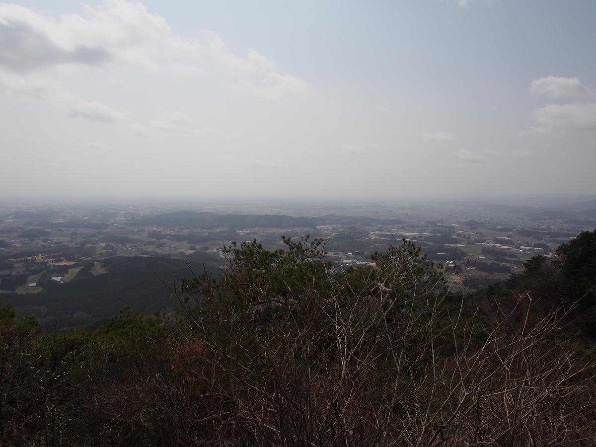 f:id:yamajoshi:20190513122543j:plain