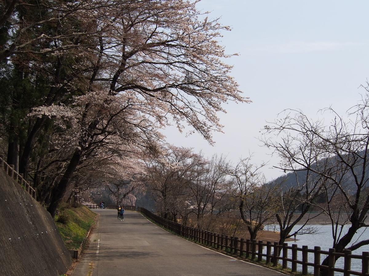 f:id:yamajoshi:20190513132137j:plain