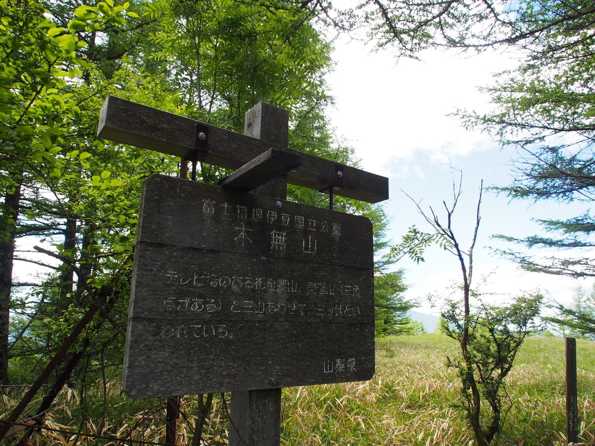 f:id:yamajoshi:20190624231843j:plain