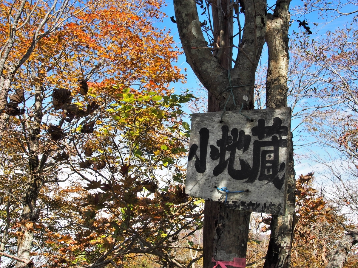 f:id:yamajoshi:20191210231137j:plain