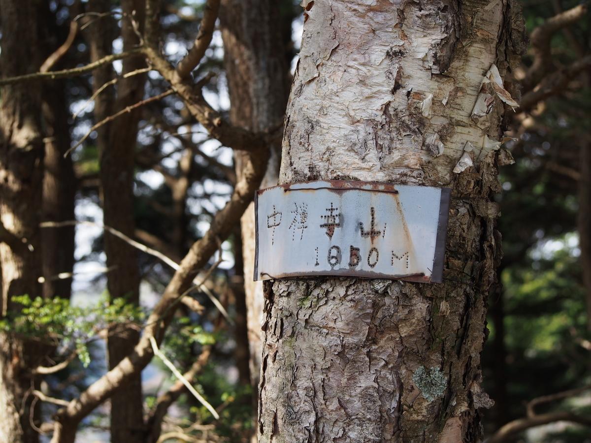 f:id:yamajoshi:20191222112530j:plain