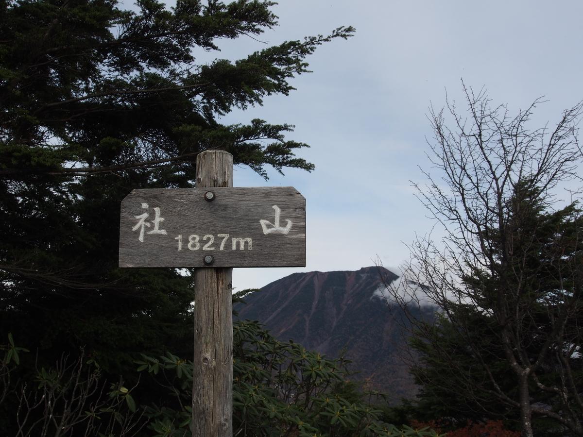 f:id:yamajoshi:20191222115854j:plain