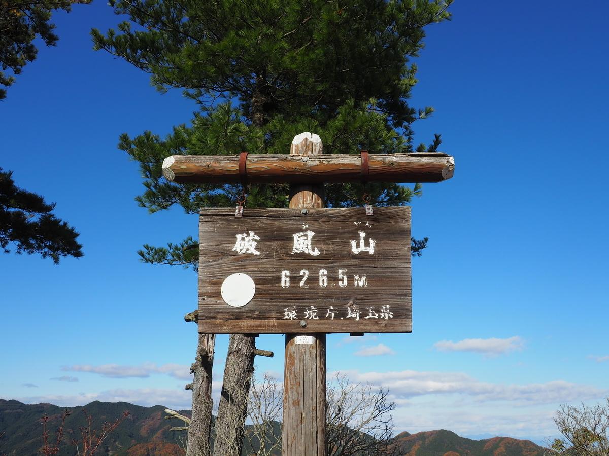 f:id:yamajoshi:20200116151409j:plain