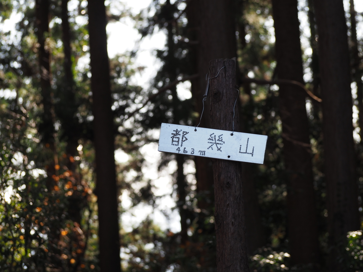f:id:yamajoshi:20200130142340j:plain