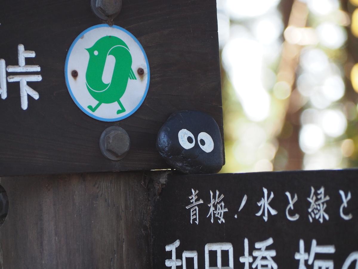 f:id:yamajoshi:20200205183638j:plain