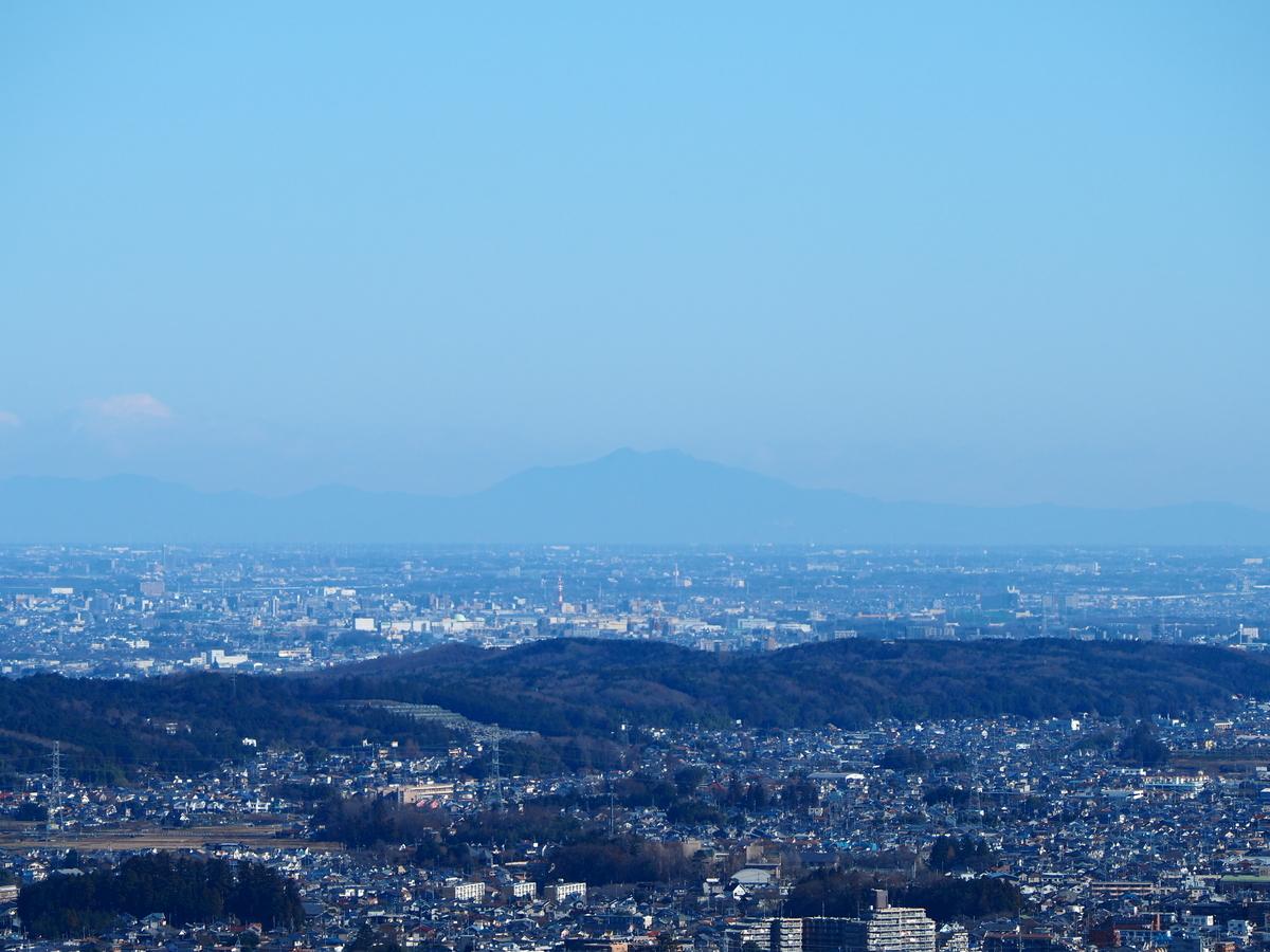 f:id:yamajoshi:20200206150432j:plain