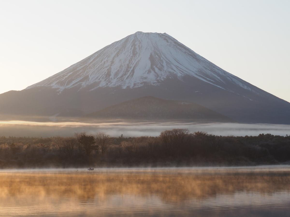 f:id:yamajoshi:20200210145257j:plain