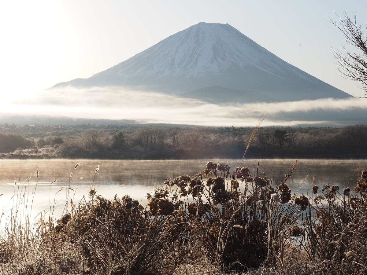 f:id:yamajoshi:20200210145435j:plain