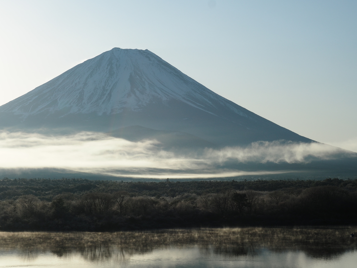 f:id:yamajoshi:20200210145518j:plain