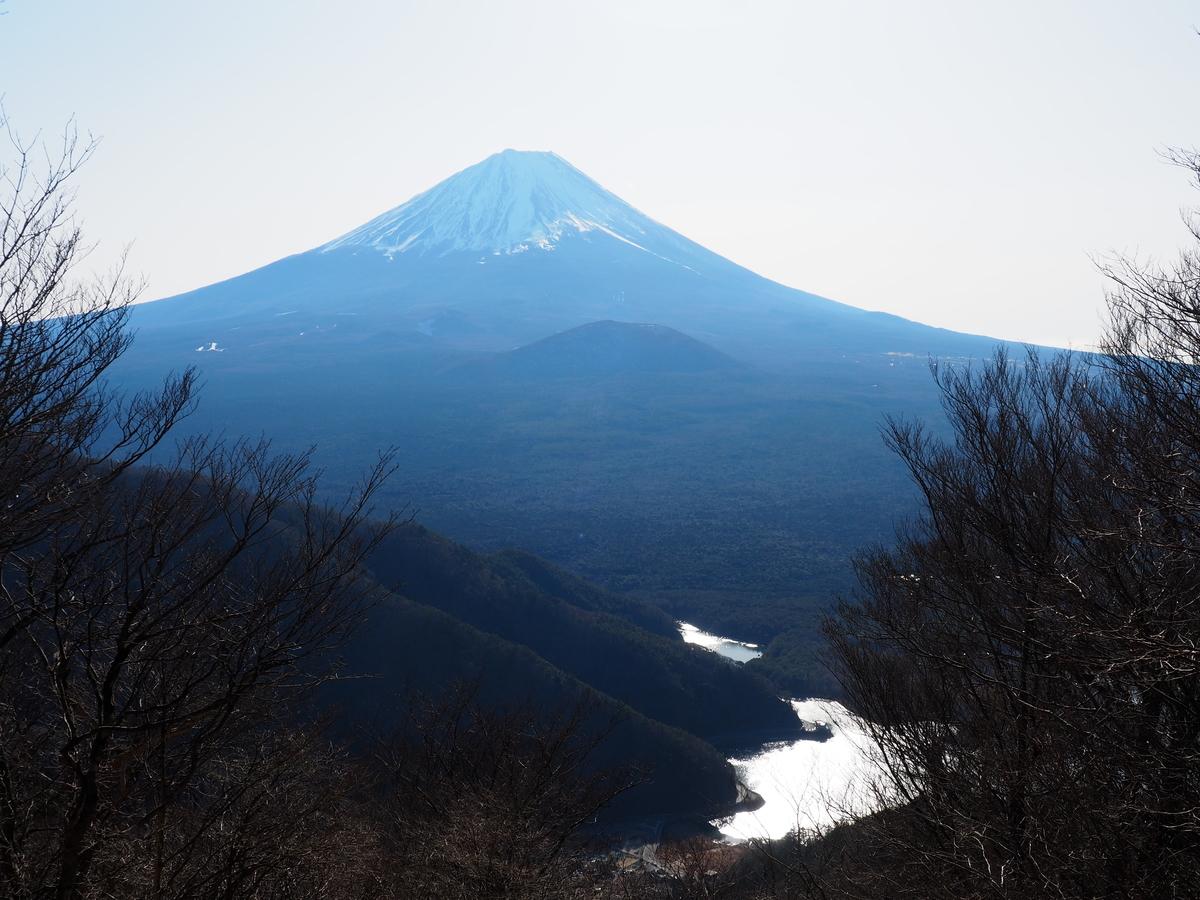 f:id:yamajoshi:20200210150339j:plain