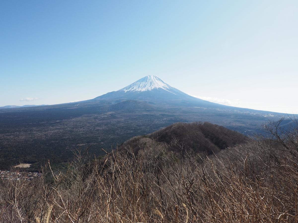 f:id:yamajoshi:20200210153932j:plain
