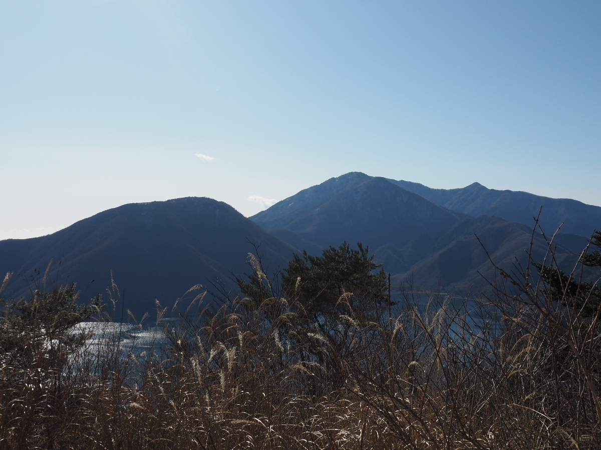 f:id:yamajoshi:20200210154149j:plain