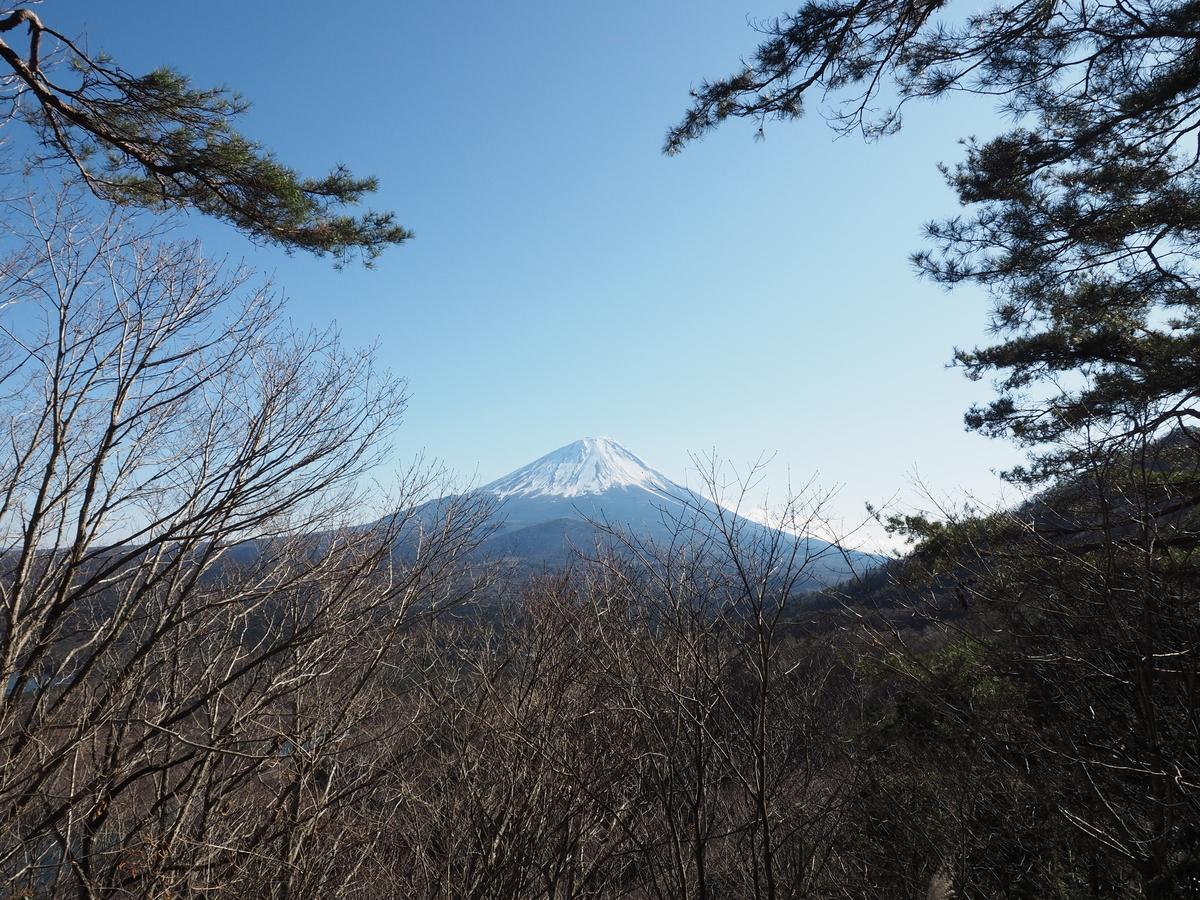 f:id:yamajoshi:20200210154827j:plain