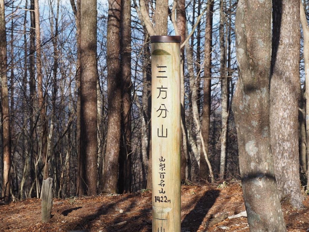 f:id:yamajoshi:20200216140811j:image