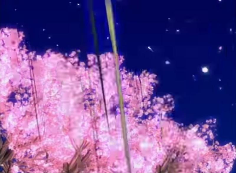 f:id:yamaki_nyx:20210617211446j:plain
