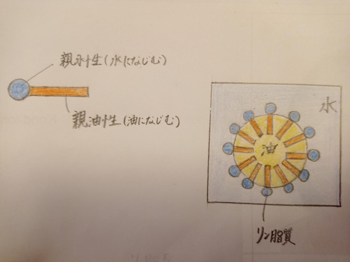 f:id:yamakochen:20210109190506j:plain