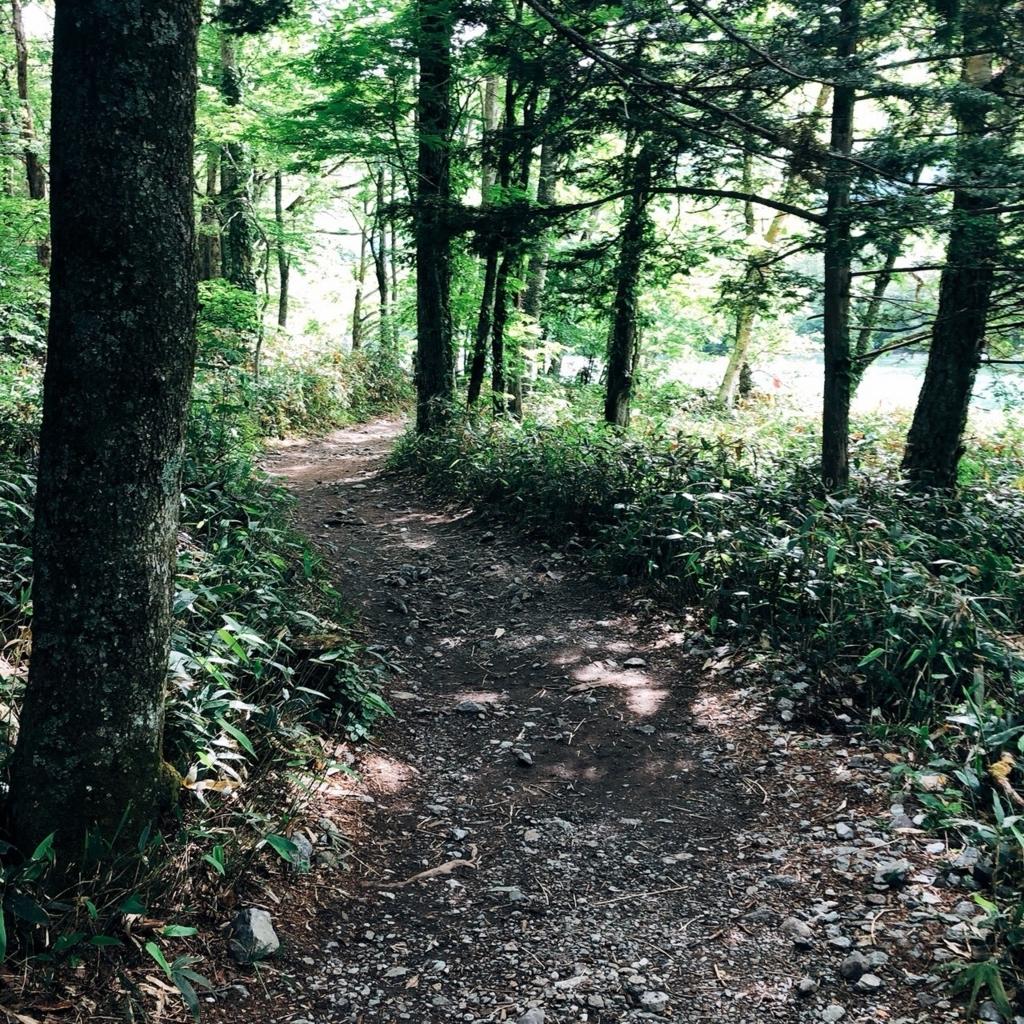 上高地の歩き方