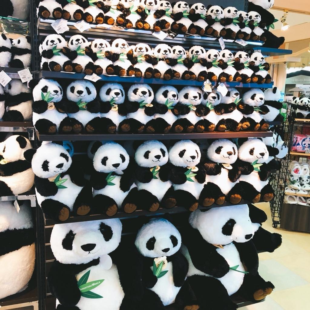 パンダのぬいぐるみの写真