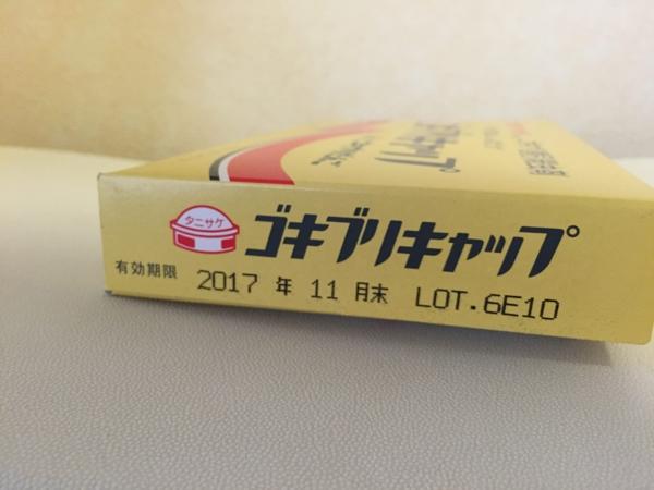 f:id:yamama48:20160621232709j:plain