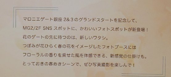 f:id:yamama48:20170319203039j:plain