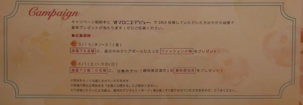 f:id:yamama48:20170319210834j:plain