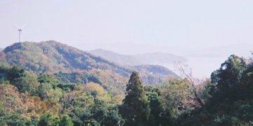 f:id:yamamayuga:20191202023209j:plain