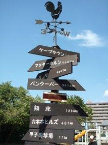 f:id:yamamayuga:20200615000205j:plain