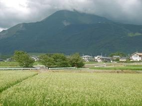 f:id:yamamayuga:20210726083734j:plain