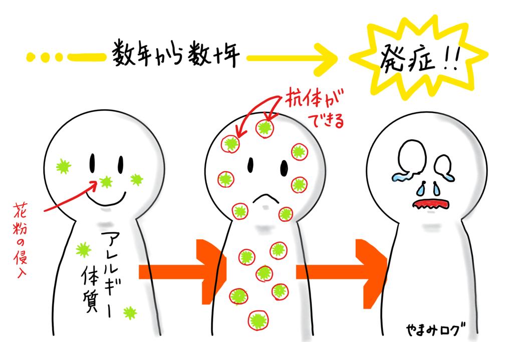 ハードコンタクト 花粉症