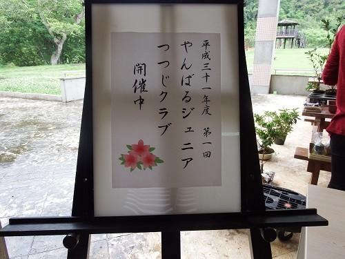 f:id:yamamizuh:20190414133409j:plain