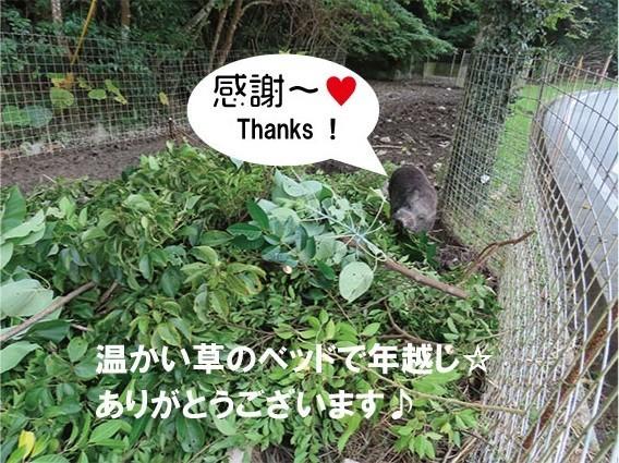 f:id:yamamizuh:20191227172932j:plain