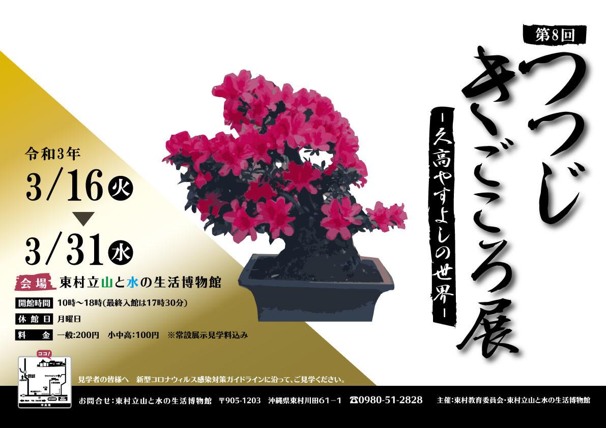 f:id:yamamizuh:20210315221508j:plain