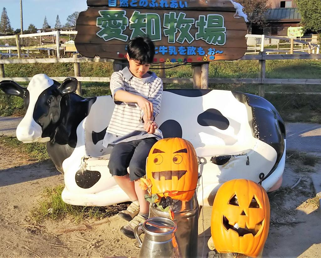 f:id:yamamomokobaru:20181122165021p:plain