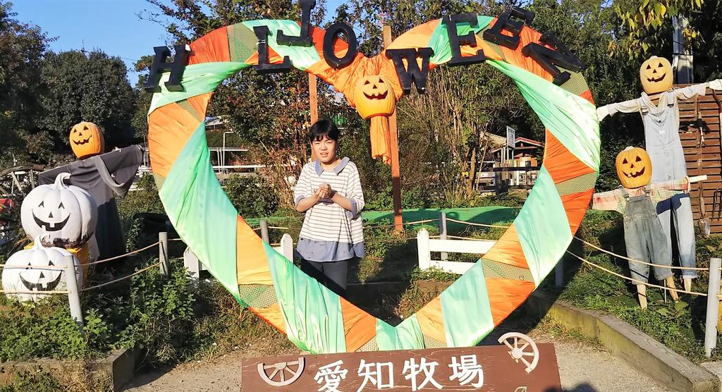 f:id:yamamomokobaru:20181129011413p:plain