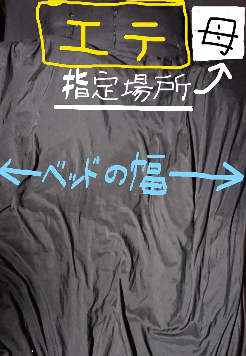 f:id:yamamomokobaru:20200613172710j:plain